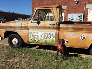 luckydog mobile