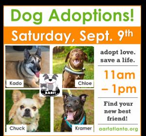 AARF Adoption!