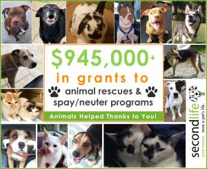 $945K Donated!