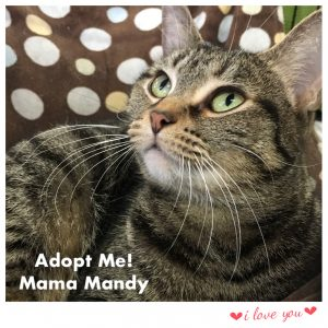 Mama Mandy!