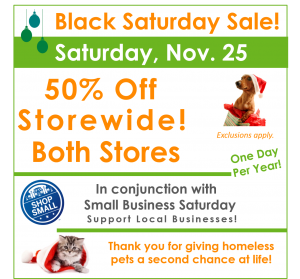 Black Saturday Sale!