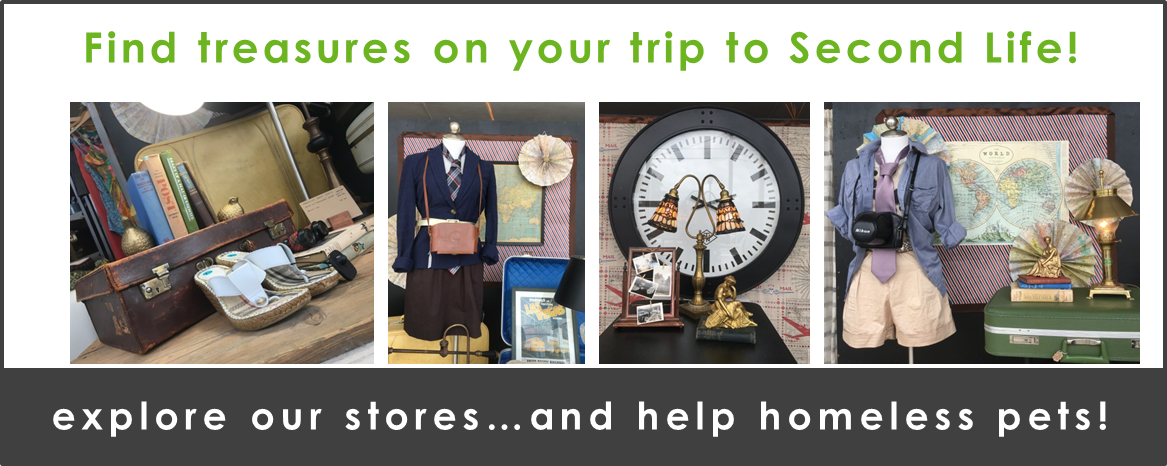Treasures Await In Our Flagship Store Update Your
