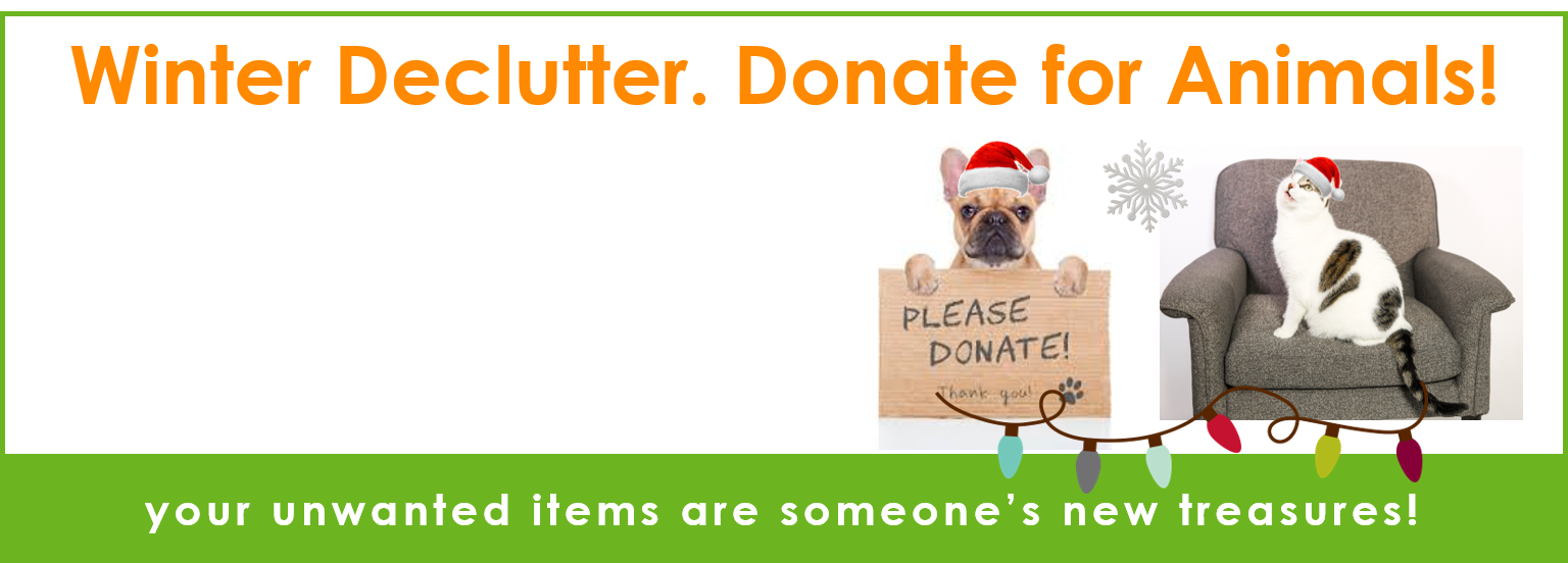 Bring JOY to homeless pets!
