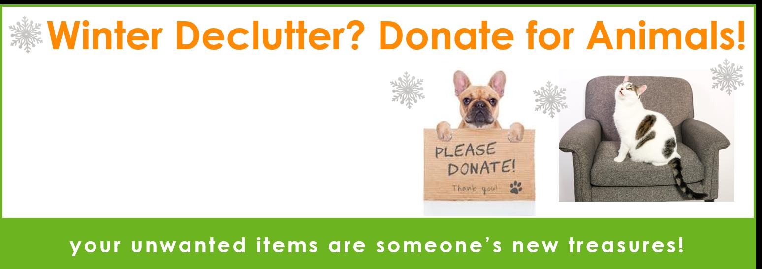 Bring JOY to homeless pets!
